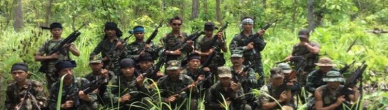Guns and Roses for Nagaland